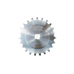 G16630410R. Piñon Z-23